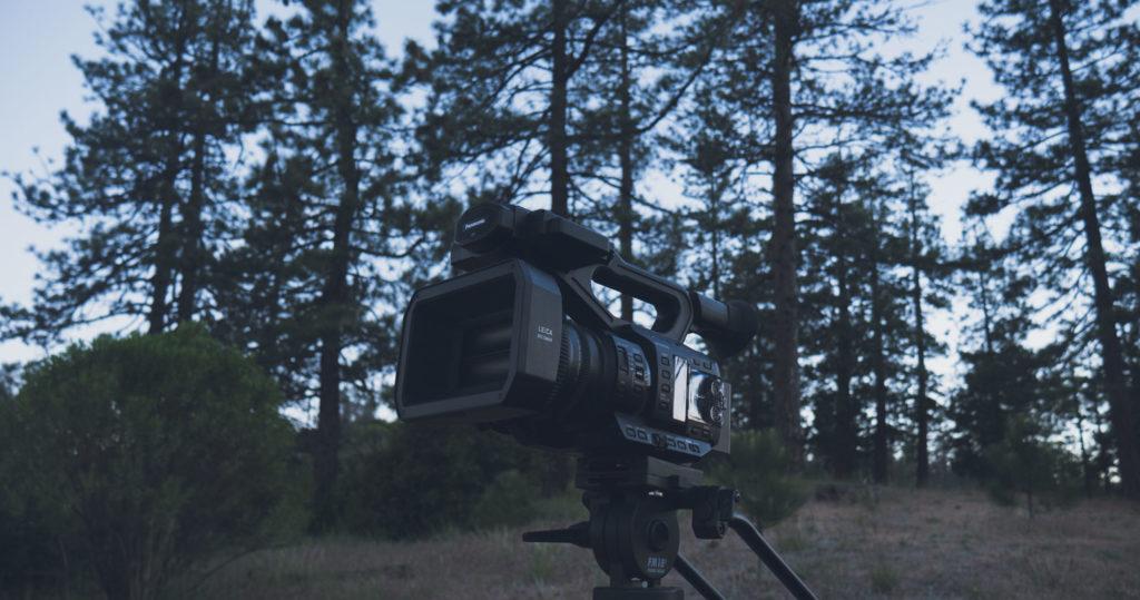 Video camera in forest scene